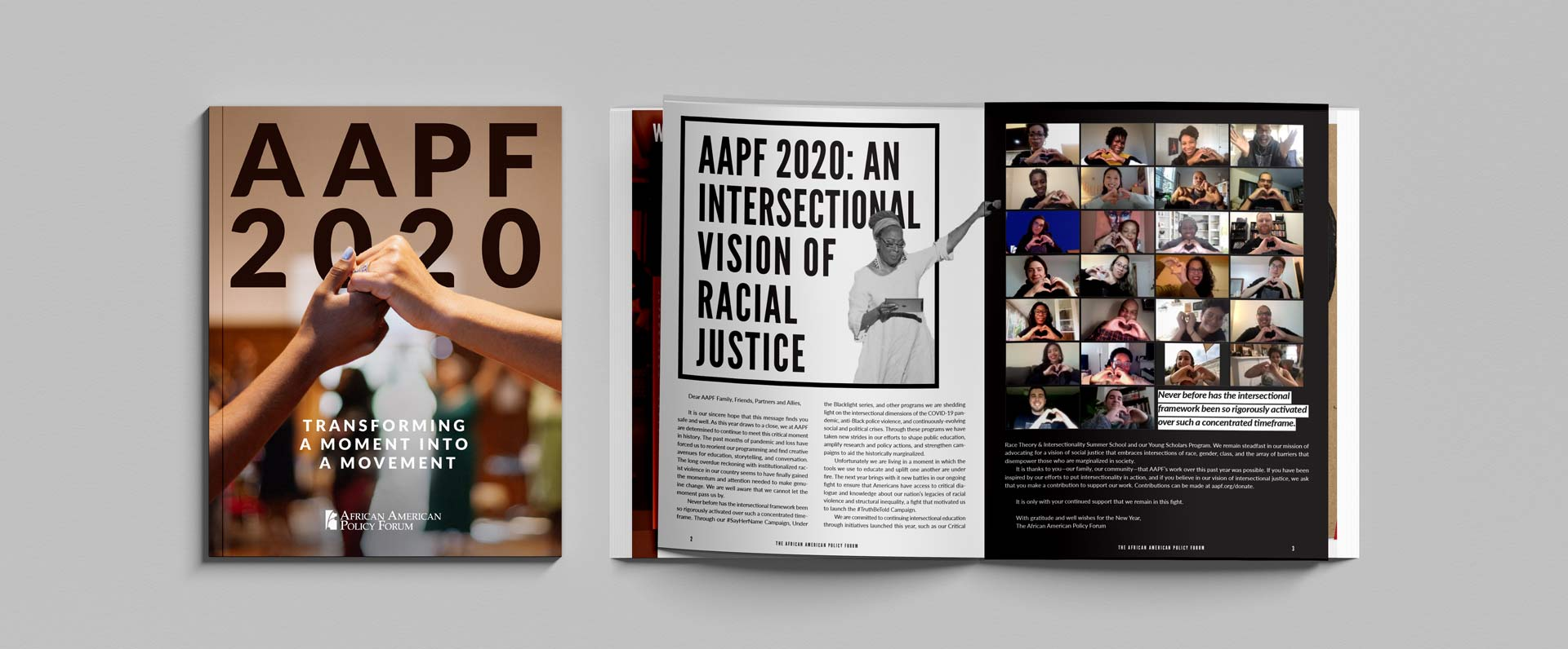 African American Policy Forum annual report image with cover