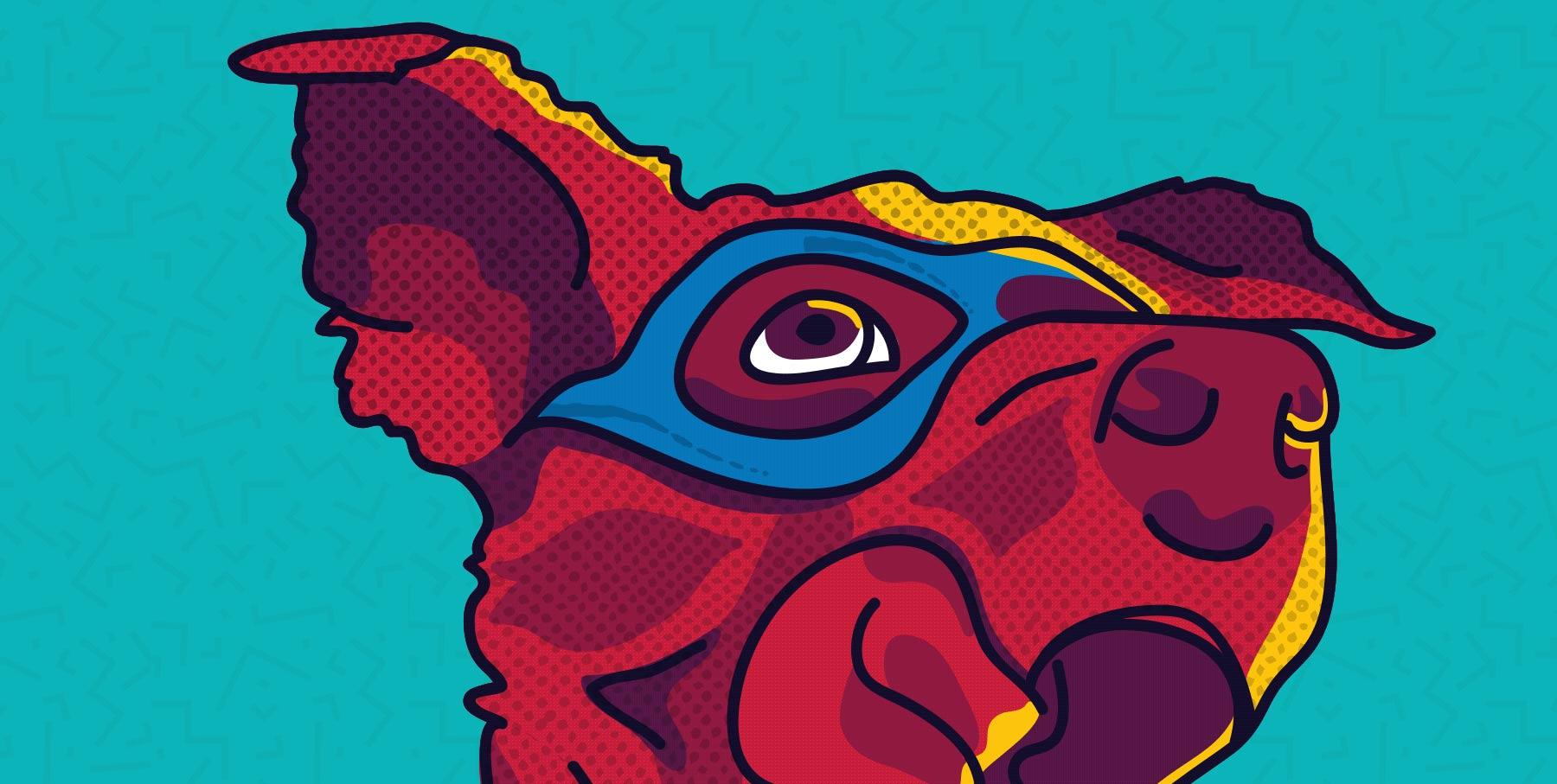 SuperQueero details 1.